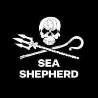 Sea Shepherd Event: Clean the beach & Movie night